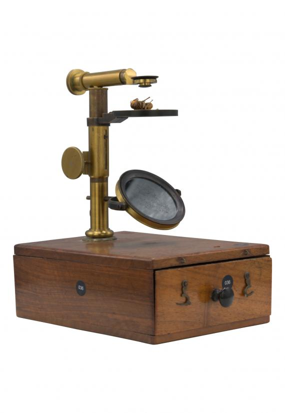 http://histoiredumicroscope.com/?p=3959
